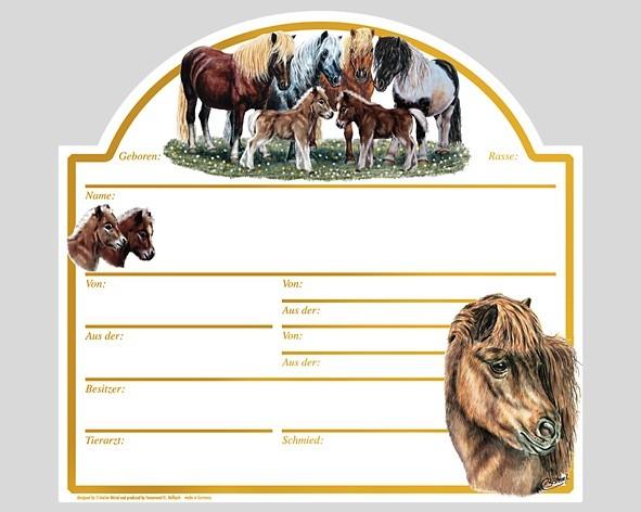"""Tafel """"Shettland-Pony"""""""